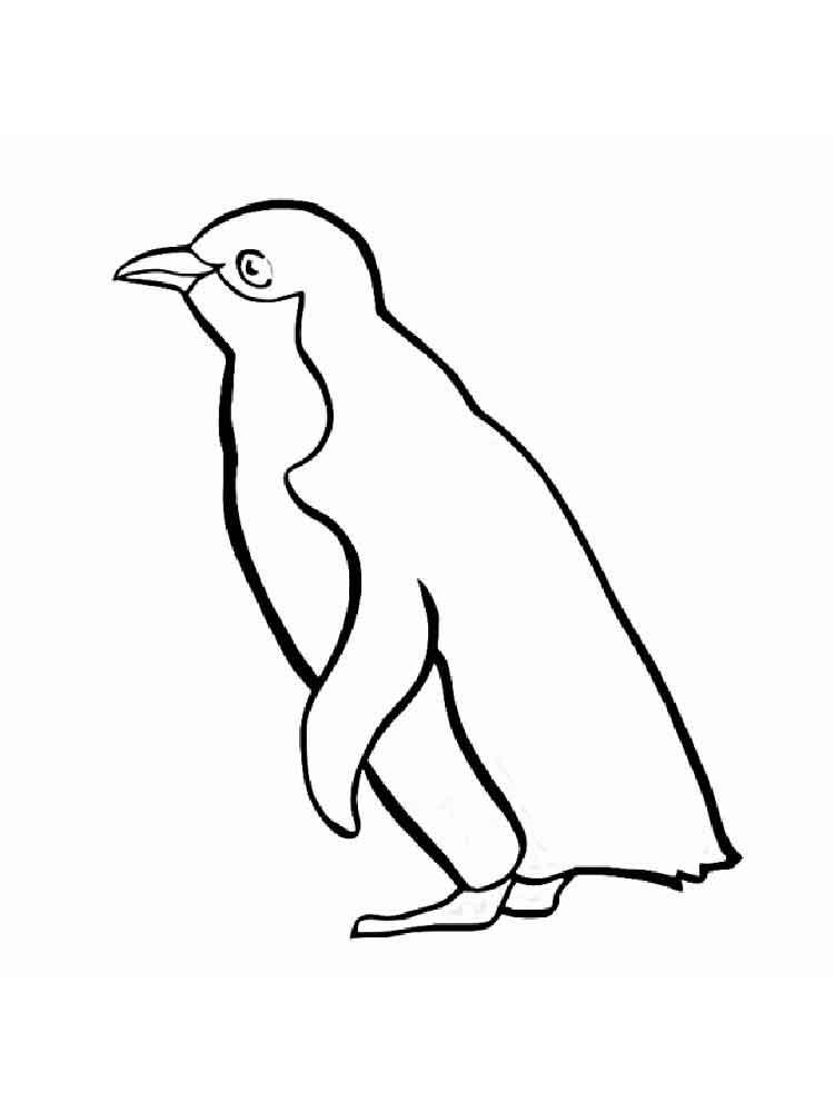 Черно-белые картинки для распечатки пингвины