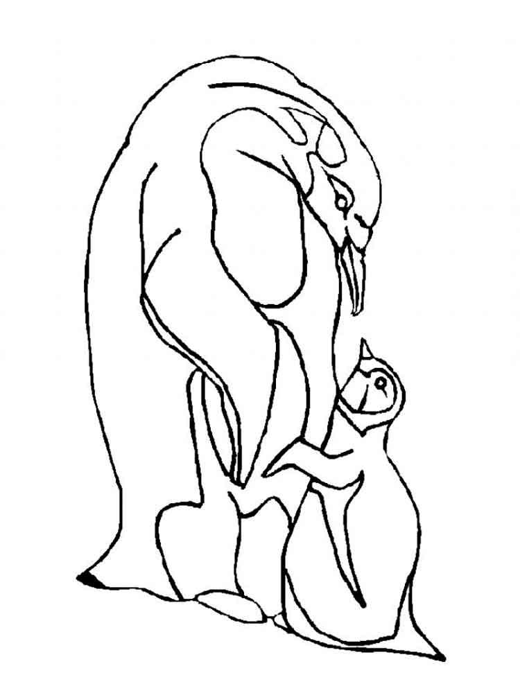 raskraski-pingvin-3