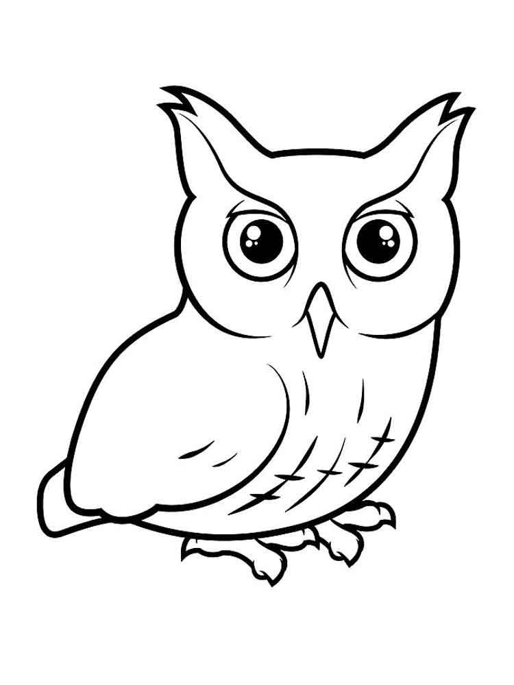 картинка сова раскраска интерьер
