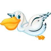 Раскраски Пеликан