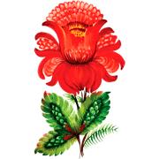 Раскраски Аленький цветочек
