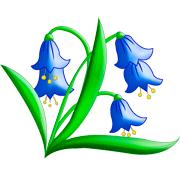 Раскраски цветок Колокольчик