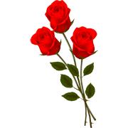 Раскраски Розы