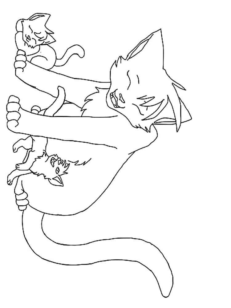 раскраски коты воители скачать и распечатать раскраски коты