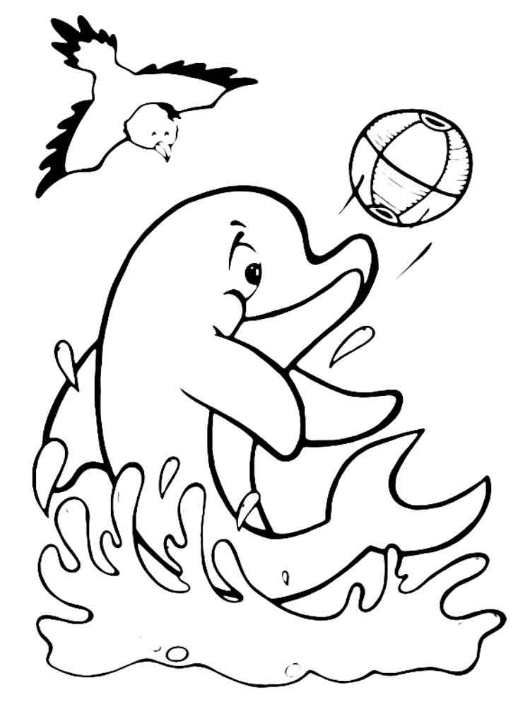 raskraski-delfin-14