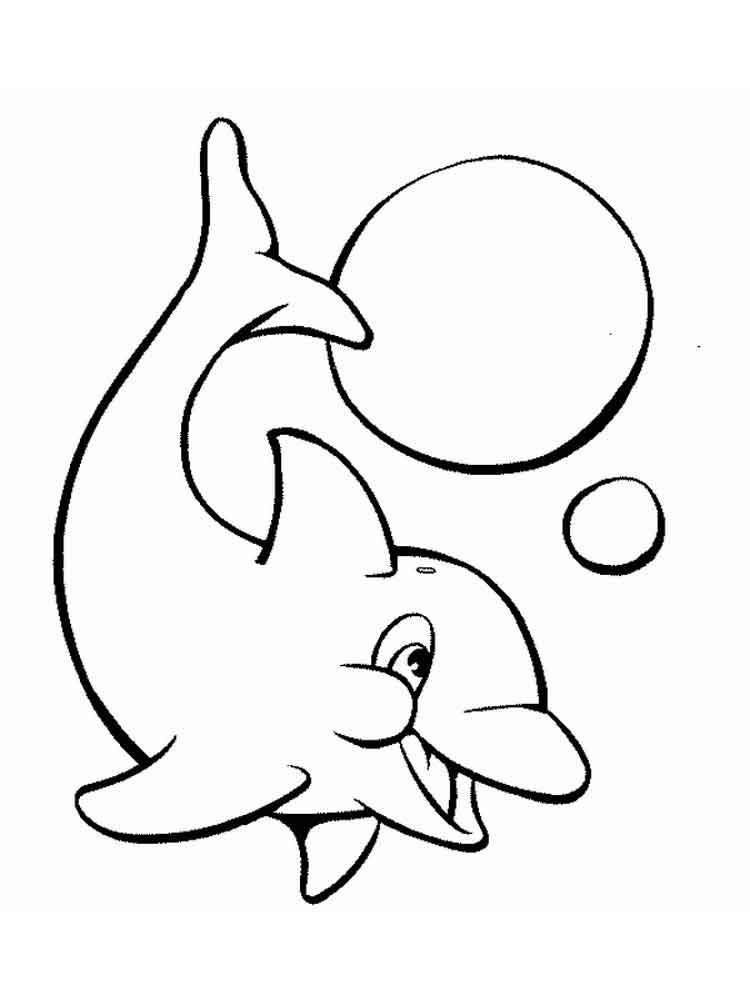 raskraski-delfin-23