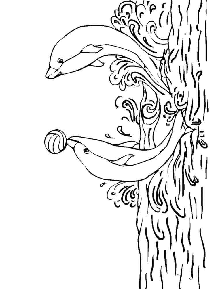 raskraski-delfin-26