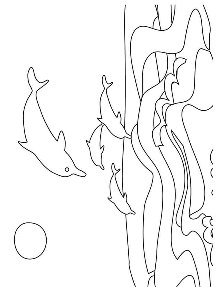 raskraski-delfin-7
