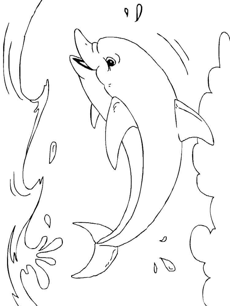 raskraski-delfin-8