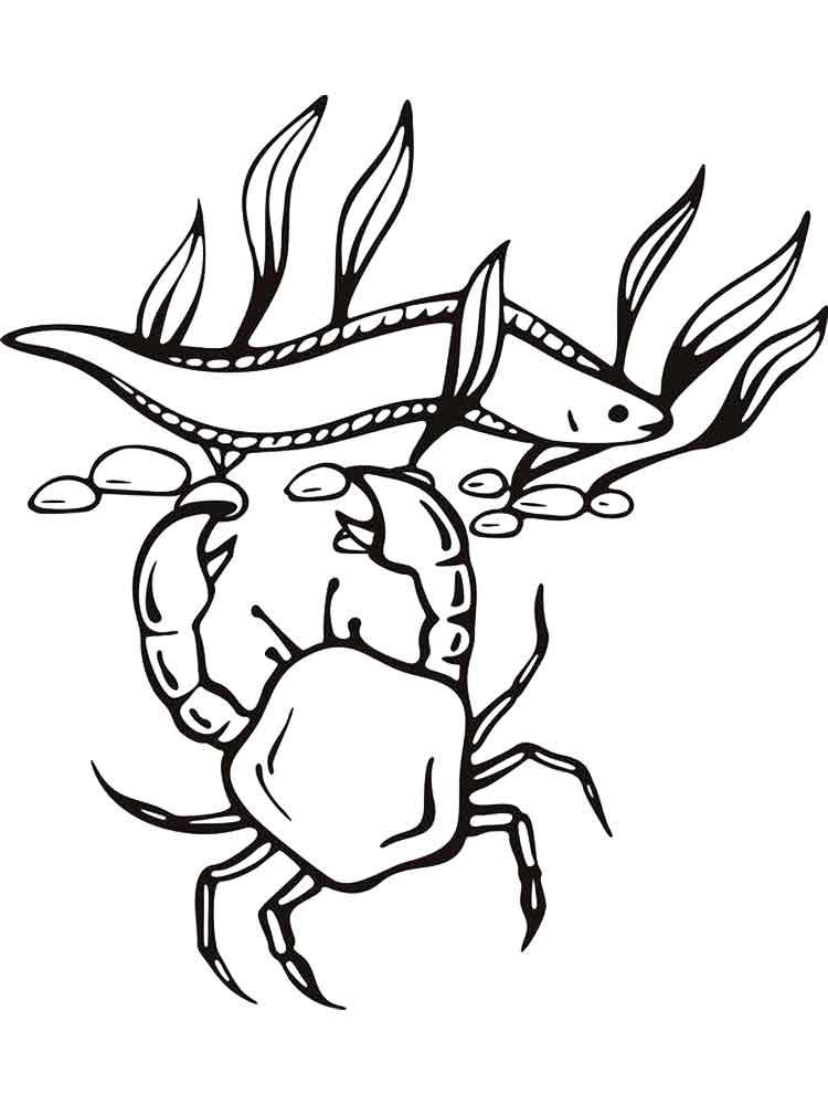 raskraski-krab-12