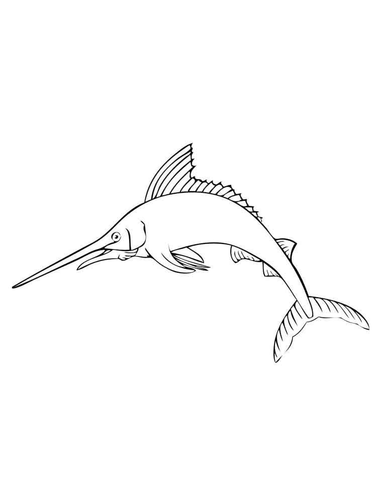 raskraski-marlin-3