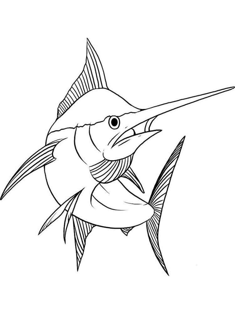 raskraski-marlin-6
