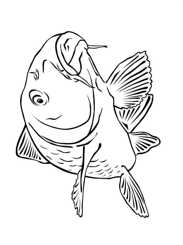 raskraski-rechnye-ryby-2