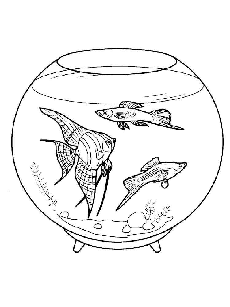 raskraski-rybki-v-akvariume-8