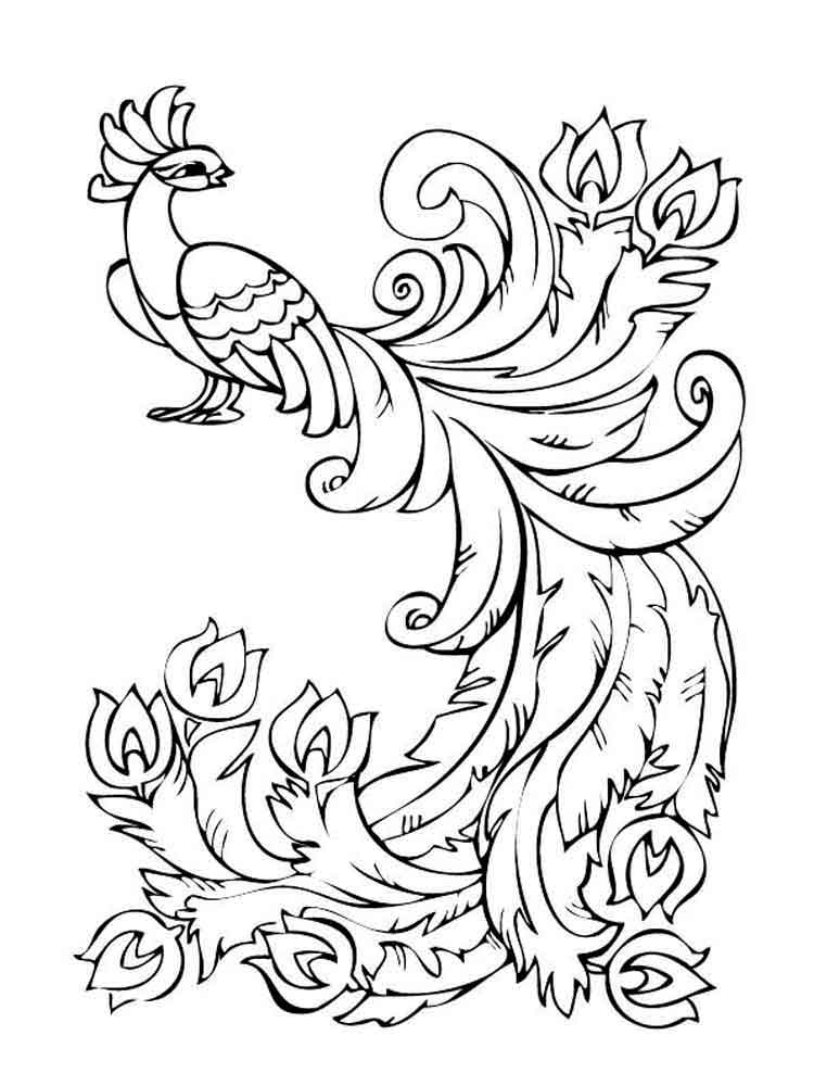raskraski-zhar-ptica-1