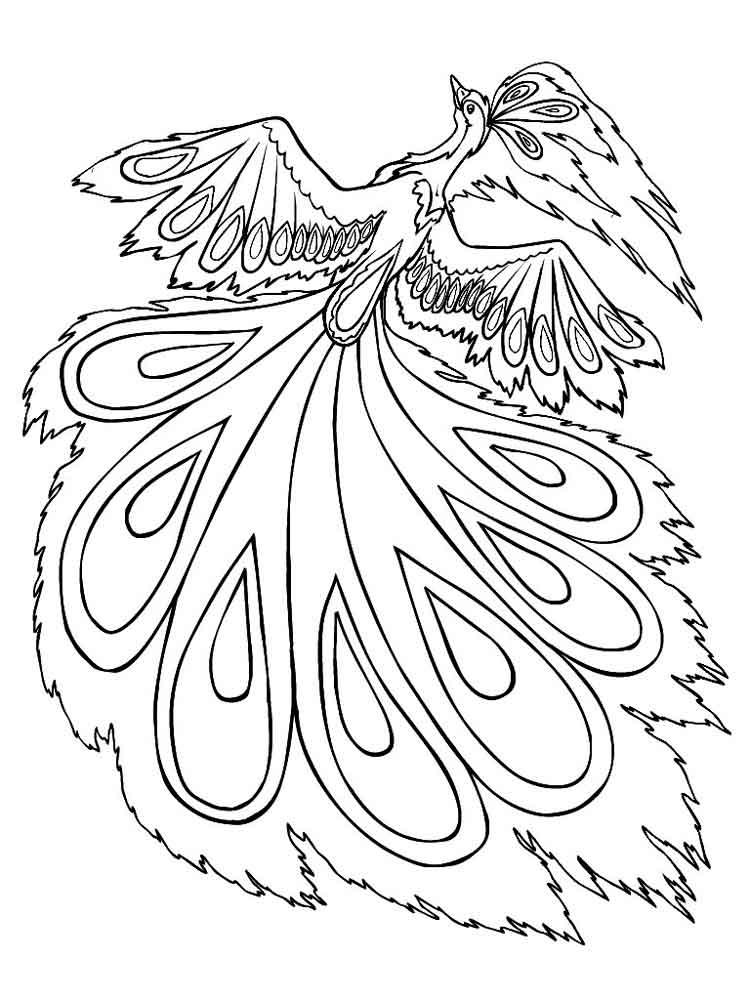 raskraski-zhar-ptica-2