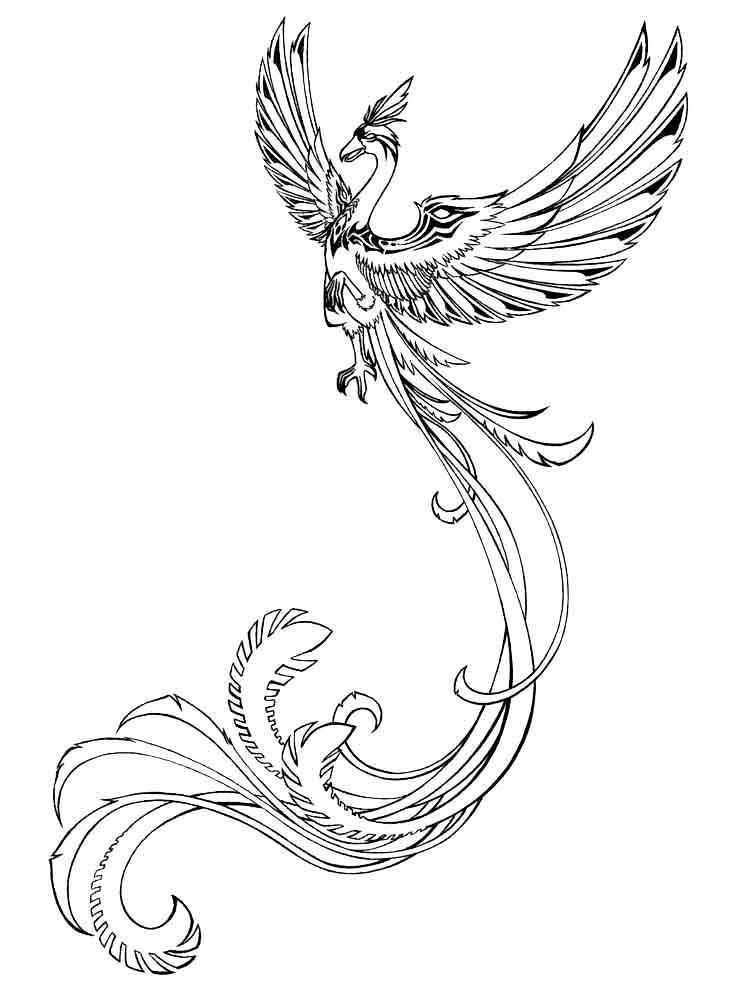 raskraski-zhar-ptica-5
