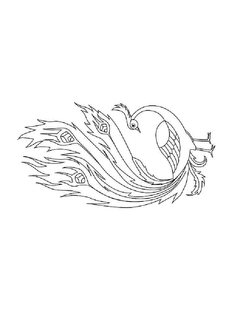 raskraski-zhar-ptica-7