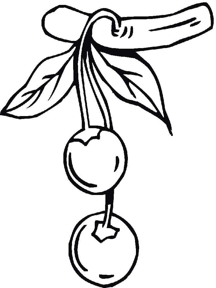 опасно рисунок вишни для раскрашивания прежнее время титул