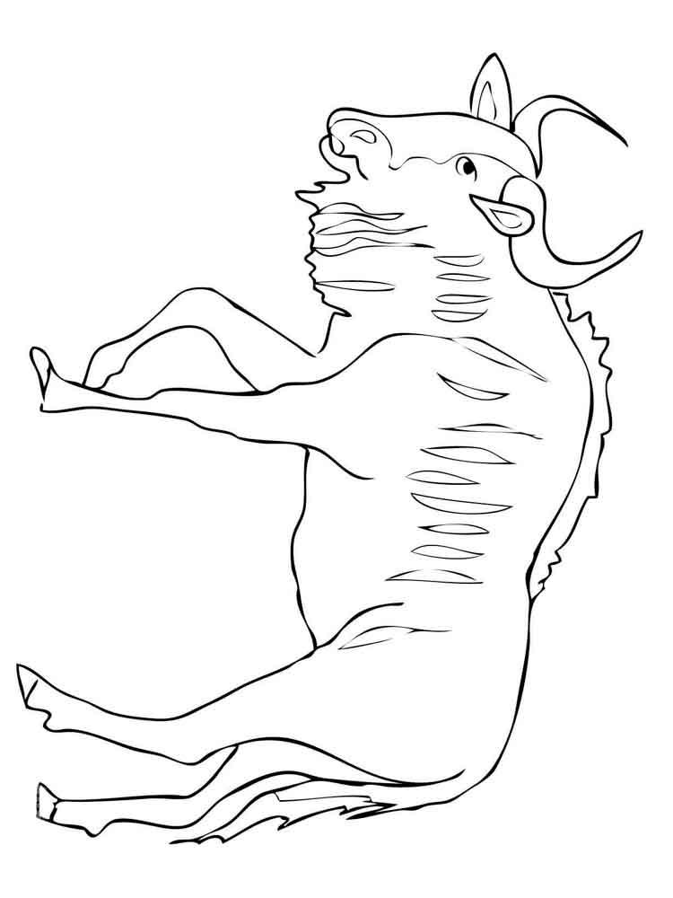 raskraski-antilopa-13