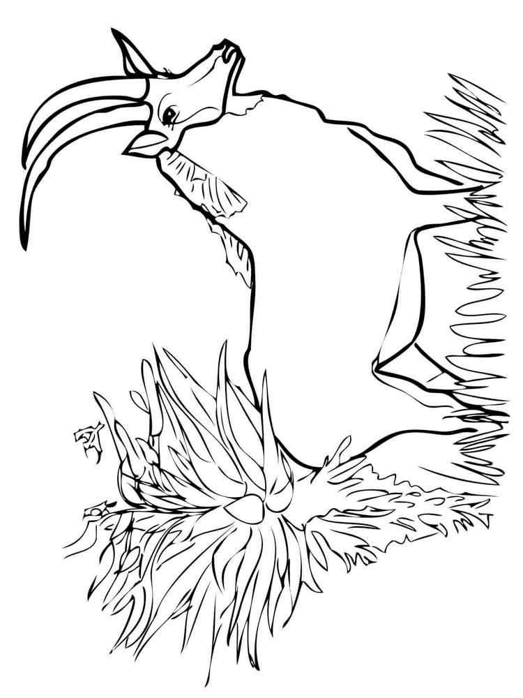 raskraski-antilopa-14