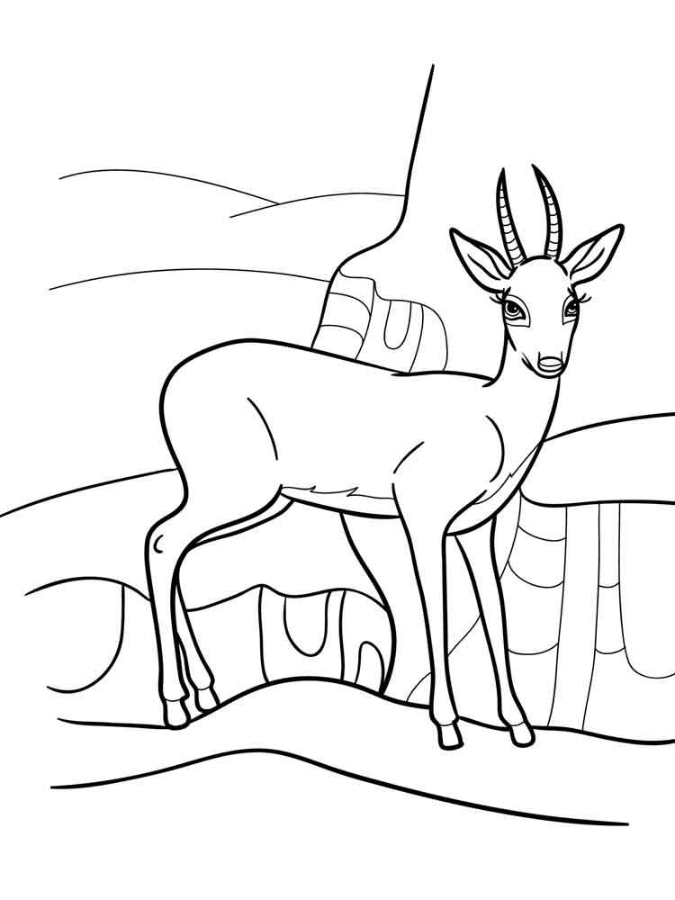 raskraski-antilopa-8