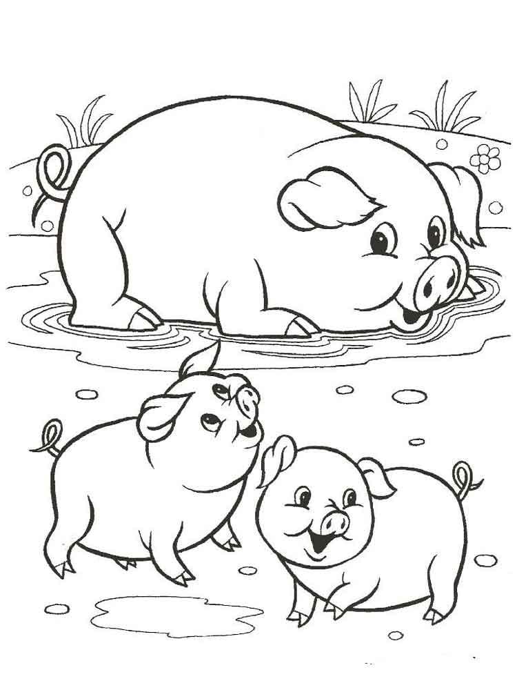 раскраски домашние животные скачать или распечатать