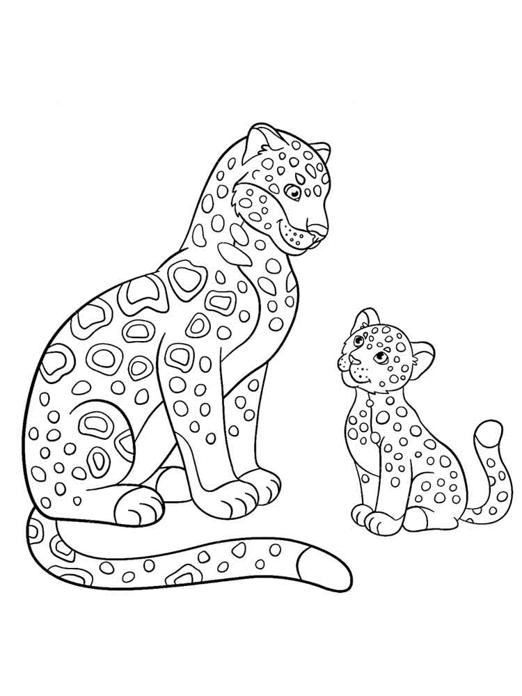 raskraski-leopard-15