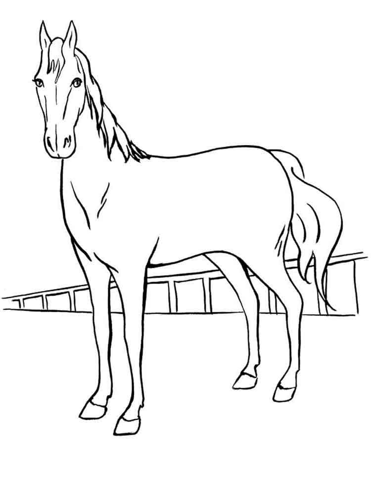 Козлик, лошадка картинки для детей распечатать для раскраски