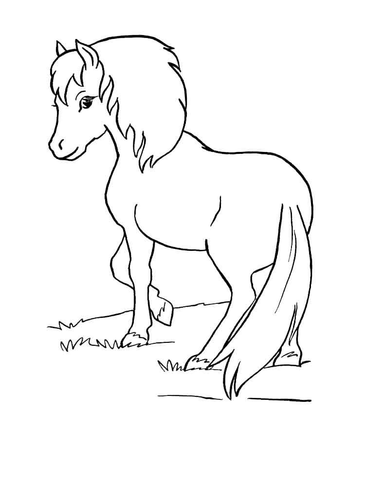 raskraski-poni-1