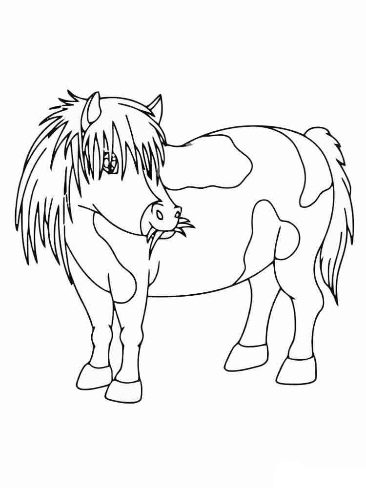 raskraski-poni-11