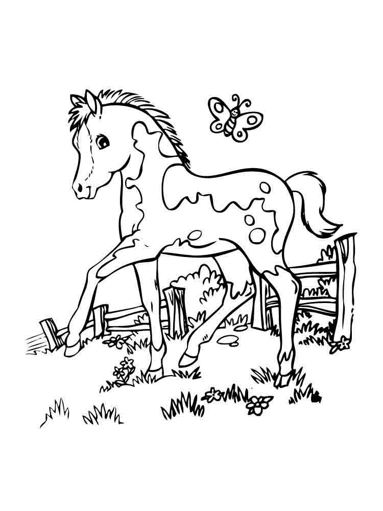 raskraski-poni-17