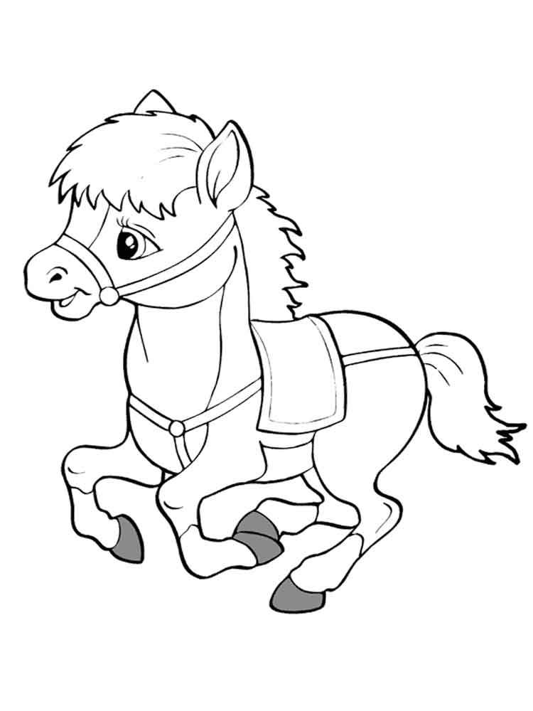 raskraski-poni-6