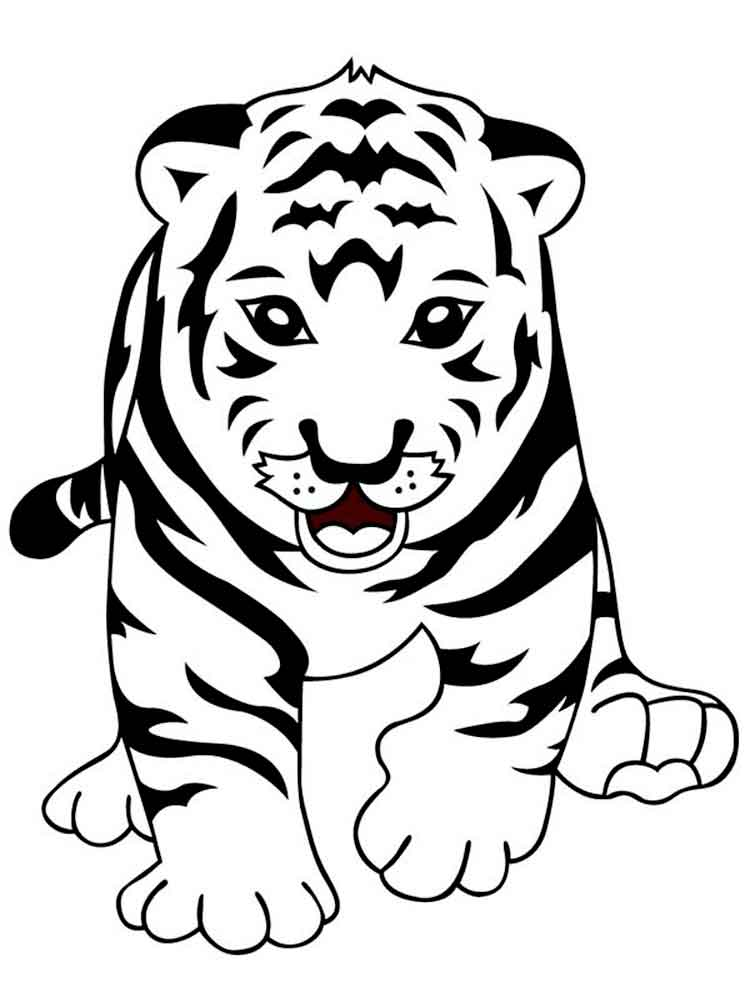 амурский тигр фото для раскраски группа