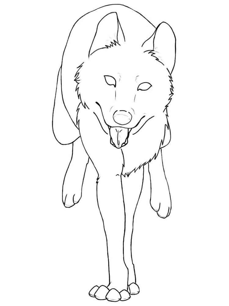 raskraski-volk-12