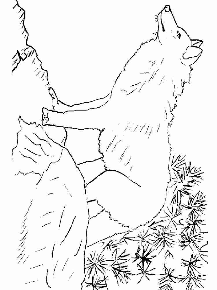 raskraski-volk-3