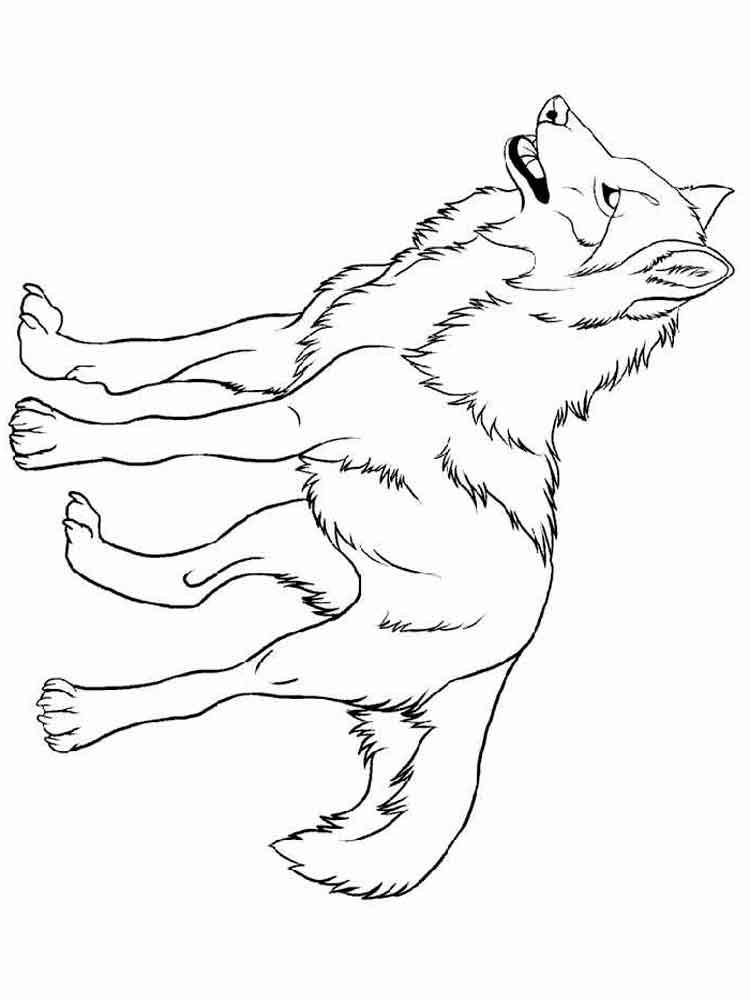 raskraski-volk-8