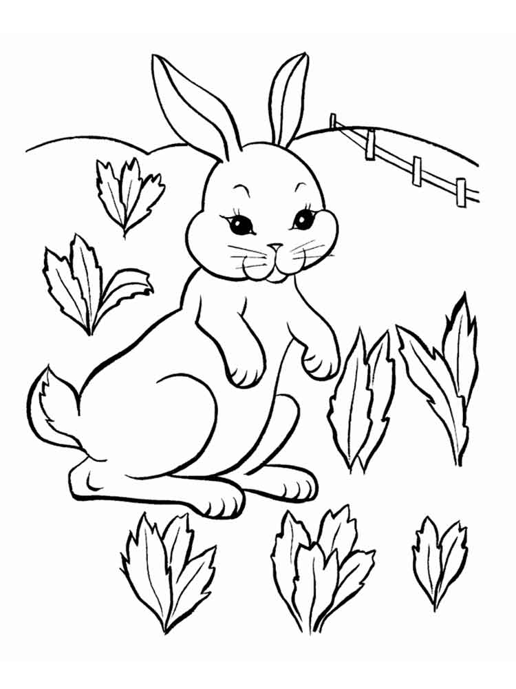 Раскраска зайцев для детей